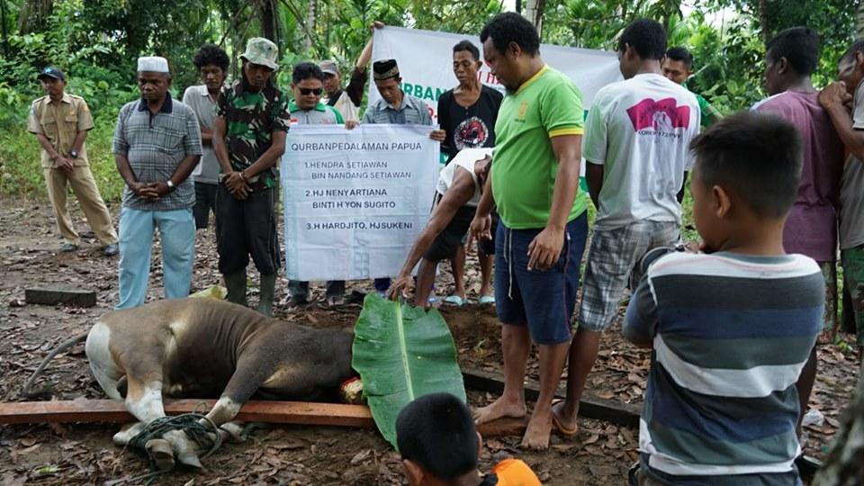 Penyembelihan hewan qurban di Papua 2