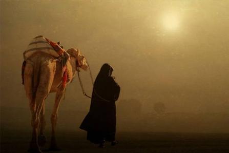 Antara Cinta dan Persahabatan, Inilah Kisah Salman Al Farisi dan Abu Darda 1